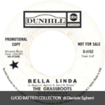 1969 – Bella Linda/Hot bright lights – The Grass Roots (Stati Uniti promo)